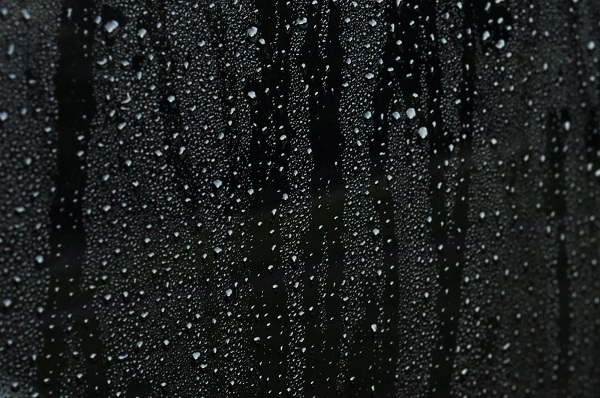 Black Raindrops. Photo courtesy of Pimentona.