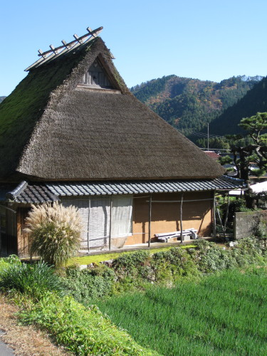Traditional Japanese house & rice paddy