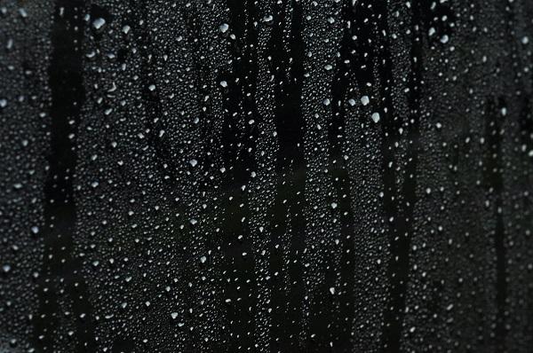 Black Raindrops. Photo courtesy of Pimentona.