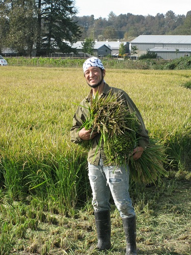 Yoshi Carrying Harvested Bundles
