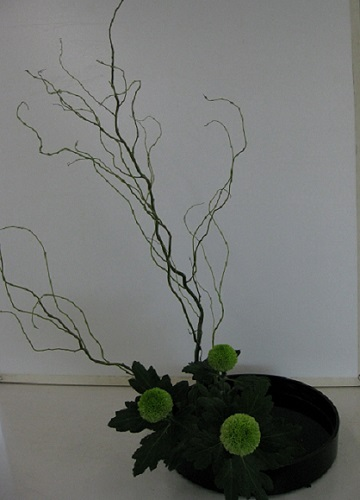 The finished arrangement