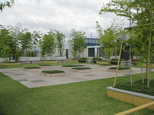Happy Terrace Garden